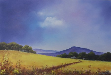 Canola Fields. 40 x 60cm oil on canvas by Wayne Clements. Episode 10 Luv 2 Paint. Unframed $695.00 Framed $875.00